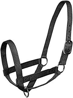 Derby Originals Adjustable Nylon Livestock and Cattle Halters with New and Improved Sizing – Multiple Colors