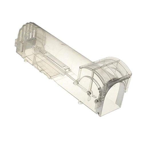 Dolity Trampa para Ratas de Plástico Suministros para Cuadras Control de Topos Universal - Totalmente Transparente