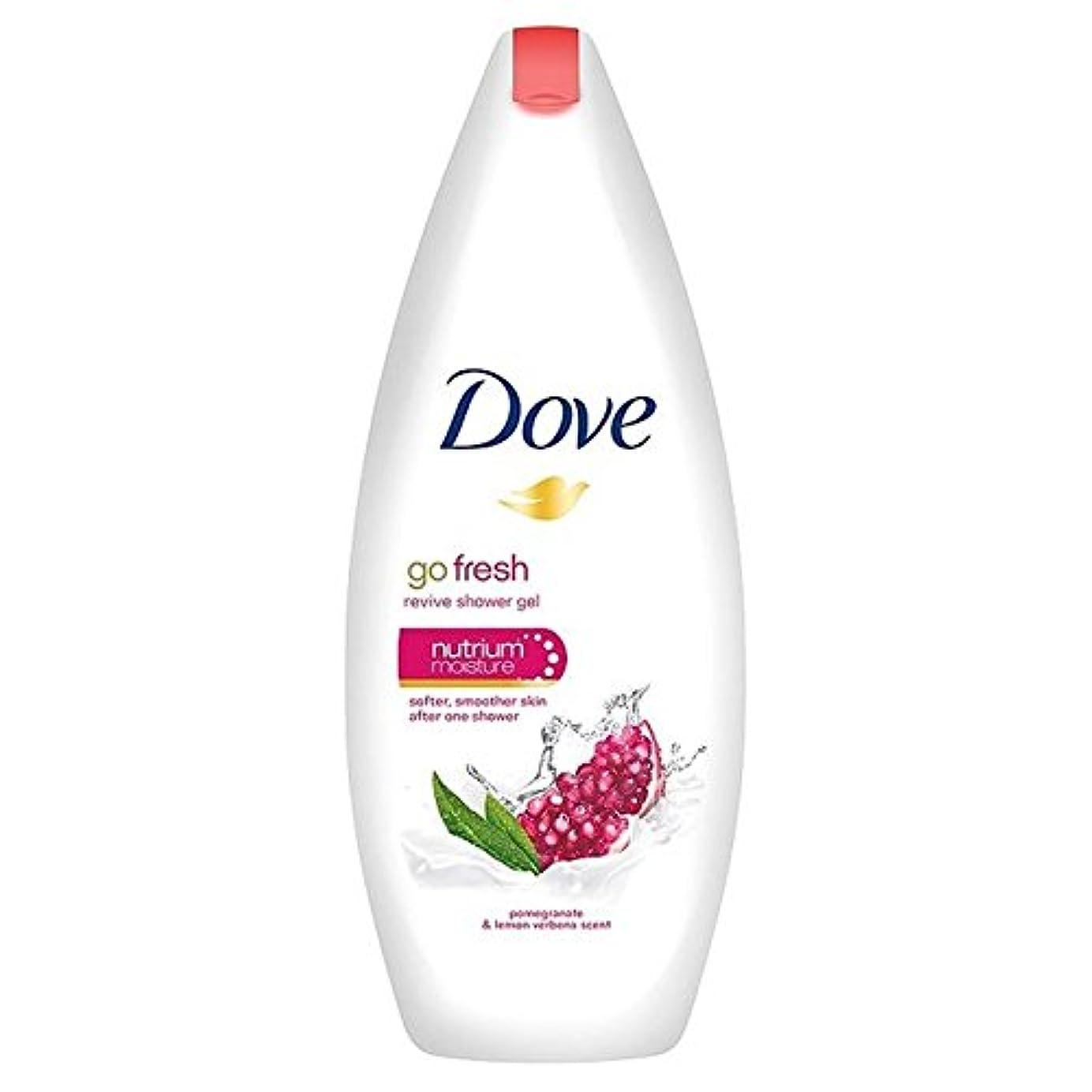 繁殖友だち証明書Dove Go Fresh Pomegranate Body Wash 250ml (Pack of 6) - 鳩は、新鮮なザクロボディウォッシュ250ミリリットルを行きます x6 [並行輸入品]