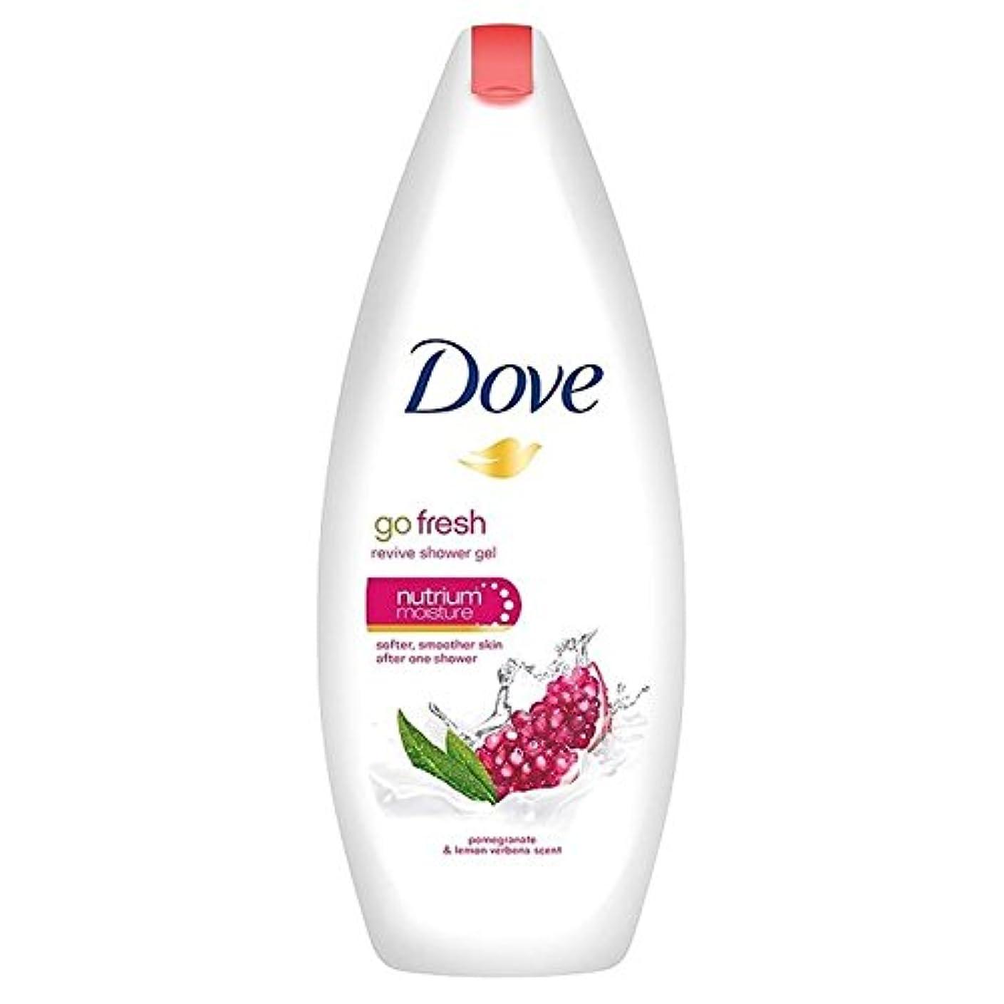 無礼に家事をするバッジ鳩は、新鮮なザクロボディウォッシュ250ミリリットルを行きます x4 - Dove Go Fresh Pomegranate Body Wash 250ml (Pack of 4) [並行輸入品]