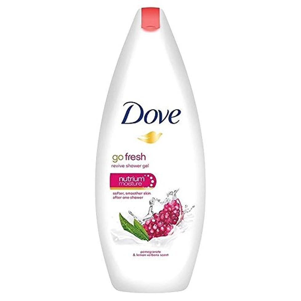 確執可聴肥料鳩は、新鮮なザクロボディウォッシュ250ミリリットルを行きます x4 - Dove Go Fresh Pomegranate Body Wash 250ml (Pack of 4) [並行輸入品]