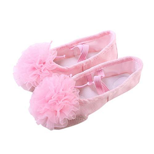 HEALLILY - Zapatillas de ballet, bailarinas, bailarinas, yoga, bailes, bailes, zapatillas de baile, de gasa, con suela suave, para ballet, danza del vientre para niños y mujeres, talla 23 23 rosa