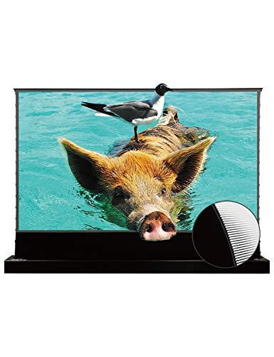4K プロジェクター スクリーン 超短焦点 100インチ VIVIDSTORM SINCE 2004 ホームシアター 16:9 電動 スクリーン レーザー 持ち運び 自立 ポップアップ型 4K 8K 3D UHD ALR レーザーTV プロジェクター テレビ 投射スクリーン シワなし PS5・PS4・ゲーム機・Fire TV など対応 ブラック- VSDSTUST100H
