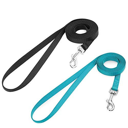 rabbitgoo 2 Pack Cat Leashes - Long Nylon Pet Leash, Escape Proof Durable Walking Leads, Easy Control Outside Cat Leash with 360 Degree Swivel Clip for Kittens/Puppies/Rabbits/Small Animals
