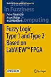 Fuzzy Logic Type 1 and Type 2 Based on LabVIEW™ FPGA (Studies in Fuzziness and Soft Computing, 334)