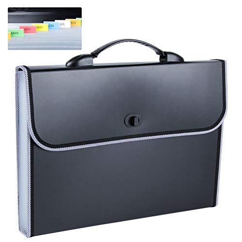 DesignSter Wasserdicht Datei Organizer A4 mit Griff, 13 Taschen Erweiterbar Datei Ordner A4, Tragbar Fächermappe A4, Akkordeon Dokumentenmappe A4 für Business, Schule