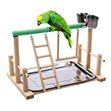 Terynbat Pájaro juguetes, soporte de loro soporte pájaro escalera hamaca parque de atracciones juguete de fitness