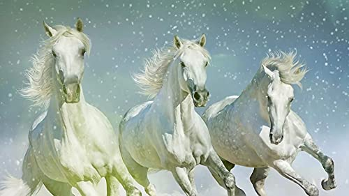 Ettfvl Tres Animales Caballo Blanco﹣DIY Pintura de Diamante Kit de artesaníaFull Drill Punto de Cruz Diamantedecoración del hogar, decoración de Pared﹣40x50cm(Sin Marco)