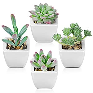 Homemaxs Fake Plants, Artificial Succulents Plants for Desk, Home and Office Decor, Faux Succulents Plants in White Ceramic Potted Set of 4