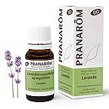 Pranarôm - Aceite Esenciale d Lavanda Bio - Sumidad Florida - 10 ml