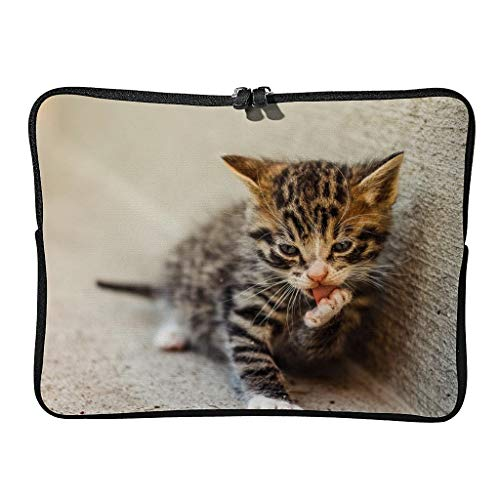 Standard Street Cat Laptop Bags Durable Multicolored Tablet Protector Suitable for Business White 15 Zoll