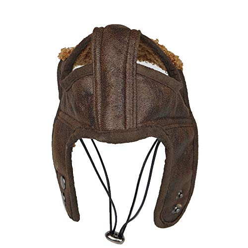 Pet Dog Winter Warm Cute Aviator Cap, Pet Costume Outdoors Windproof Leather Pilot Motorcycles Protect Hat (Coffee, Small)