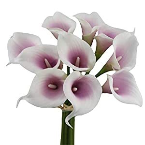 Angel Isabella, LLC Lifelike Artificial Flowers Real Touch Calla Lily Bouquet Bundle 10 Stems (Picasso Lilac)