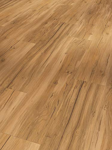 Parador Vinyl Basic 5.3 - Vinylboden Eiche Natur - Hochwertiger, elastischer Bodenbelag in Holz-Optik, leise und komfortabel mit Klick-Verlegung - mit V-Fuge