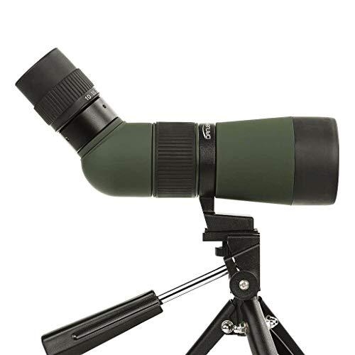Dörr Danubia 538245 Zoom Spektiv Kauz 10-30x50 inkl. Tischstativ (Gehäuse mit Gummiarmierung, 45 Grad Schrägeinblick) grün/schwarz