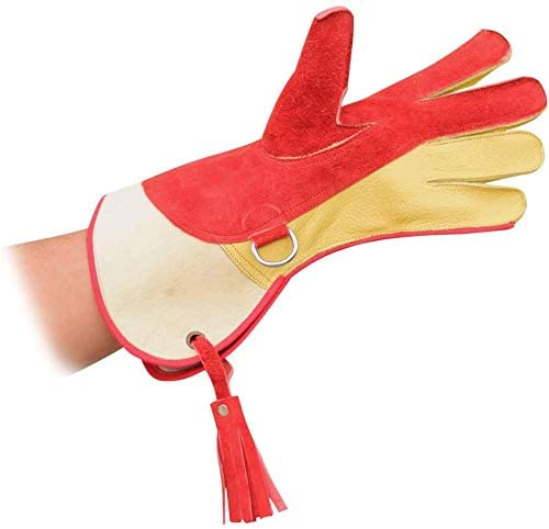 AshyTrade Falconry Fees free!! Eagle Gloves New Unique Mixture of Edition OFFicial mail order