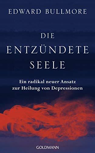 Die entzündete Seele: Ein radikal neuer Ansatz zur Heilung von Depressionen