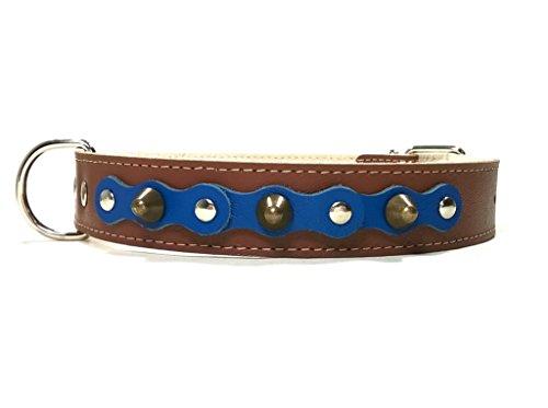 Superpipapo Hunde-Halsband, Braun Blau Leder Handmade Design mit Nieten, Robuste Ausgefallene Qualität für Mittelgroße und Große Hunde, 55 cm X: Halsumfang 40-45 cm, Breit 28mm