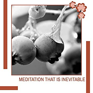 Meditation That Is Inevitable