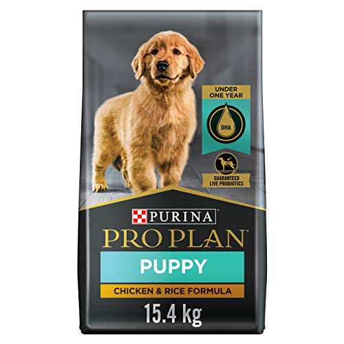 Purina Pro Plan Dry Puppy Food, FOCUS Chicken...