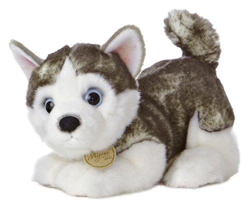 "Aurora - Miyoni - 10"" Siberian Husky Pup"