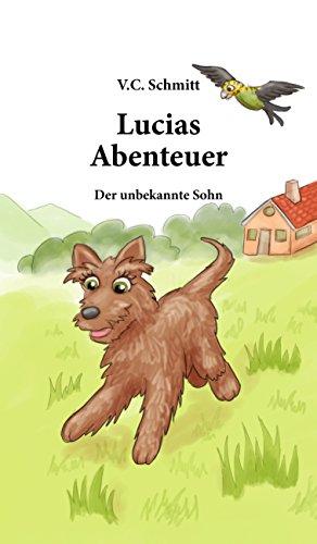 Lucias  Abenteuer: Der Unbekannte Sohn