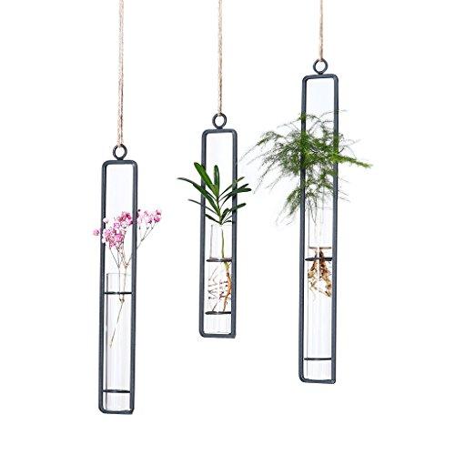 Hanging Glass Planter Water Iron Art Hydroponic Vase Transparent Test Tube Flower Hanging Bottle Home Decoration (3pcs-S,M,L)