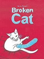 Broken Cat
