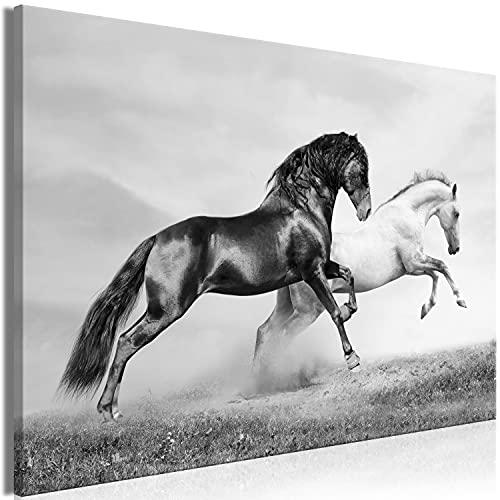 murando - Bilder laufende Pferde 120x80 cm Vlies Leinwandbild 1 TLG Kunstdruck modern Wandbilder XXL Wanddekoration Design Wand Bild - Steppe Galopp Laufen grau g-B-0218-b-a