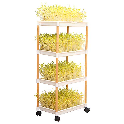 Seed Sprouter Double Layers Sprout Trays with Solid Wood Support Frame BPA Free PP Soil-Free Big Capacity Healthy Wheatgrass Seeds Grower Sprouting Kit 14.3x10.4 inches (4 Layers with Wheels)