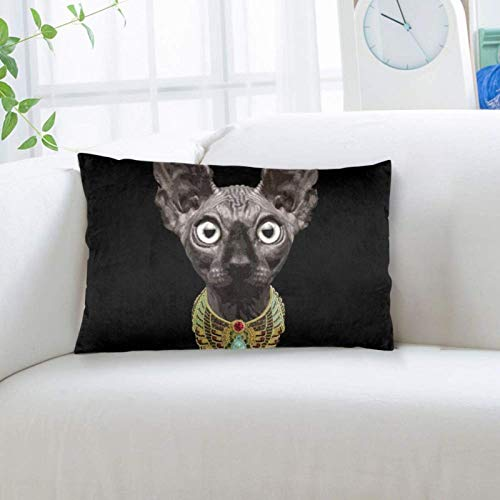Ouskfh 668 Throw Pillow Case Standard Size 20x36 Inch Pillowcase Sphinx Cat Egyptian Necklace Pillow Cover with Hidden Zipper for Home Bed Room Sofa Decorative