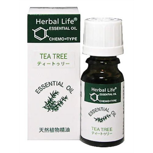 生活の木 ティートゥリー精油/Tee tree