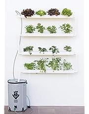 Hidroponía, Huerto Vertical para Cultivo de 16 Plantas, con depósito de 50 litros y riego automático. Bomba y abono hidropónico. SIN Pegamento PVC