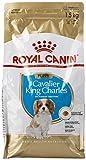 Royal Canin Cavalier King Junior Nourriture pour Chien 1,5 kg