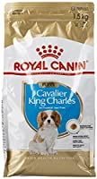 Junior Cavalier Dry food