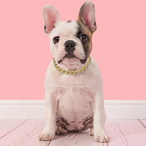 OhhGo Collar para perro pequeño y mediano para mascotas Col