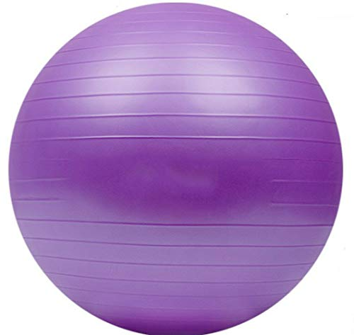 ESJY Pelota De Yoga Pilates Ballyoga Ball Guide Moribundo