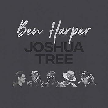 Joshua Tree (Band Version)