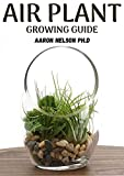 AIR PLANT GROWING GUIDE: A PROFOUND GUIDE TO GROWING TILLANDSIA (English Edition)