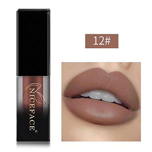 Huihong NICEFACE 18 Schattierungen matte Lippen Dessous flüssige Lippenstift, langlebig und wasserdicht. (Sexy 12)