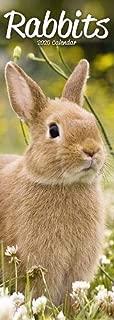 dear hancock bunny calendar