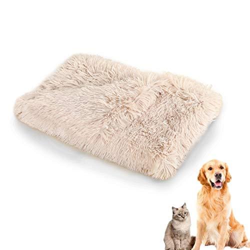 TaimeiMao Gatos Felpa Mantas,Mantas Mascotas Suave y Cálido,Perros Lavable Mantas,Mascotas Mantas Suave Felpa,Suave Animal Manta,Manta Perros Mascotas (Arroz Integral)