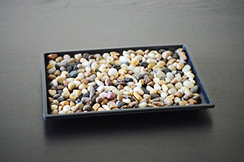 9GreenBox Bonsai Humidity Drip Tray - Decorative Catcher Plate for Drainage and Moisture - Black Polished Plastic Container with Natural Pebbles - Large Space Good for 2 Potted Miniature Trees - 7'x9'