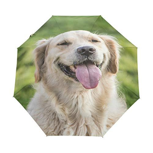Bigjoke Regenschirm, 3-Fach faltbar, automatisch, mit niedlichem Hundemotiv, Winddicht, leicht, kompakt für Jungen, Mädchen, Männer, Frauen
