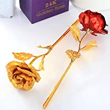 Sky Trends Creatives 24K Gold Rose and Red Rose Combo with Gift Box - Best Gift for Loved One On Valentine, Father/Mother Day, Anniversary, Birthday with Gift Box st-09