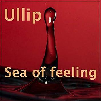 Sea of Feeling