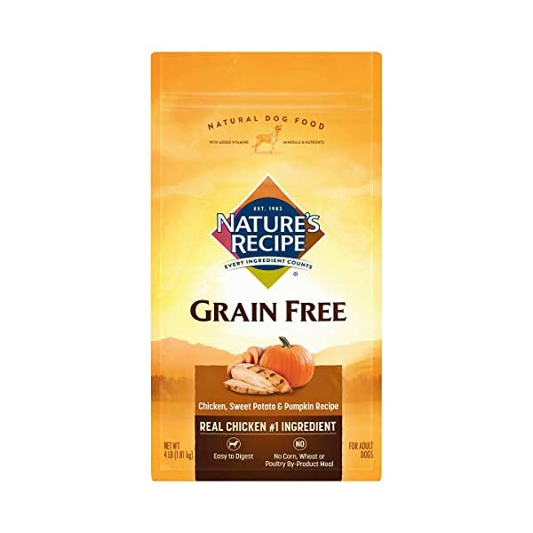 Nature's Recipe Grain Free Dry Dog Food, Chicken, Sweet Potato & Pumpkin Recipe, 4 Pounds, Easy to Digest