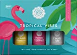 Woolzies Tropical Vibes Set of 3 Essential Oil Blends   Fresh Air, Sunny Outlook & Poolside Mimosa   10ML
