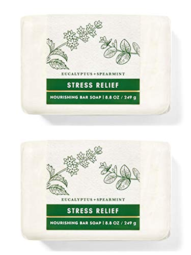 Bath and Body Works Eucalyptus Spearmint Soap x2