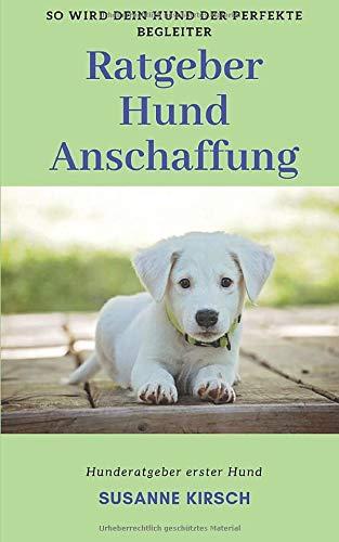 Ratgeber Hund Anschaffung: Hunderatgeber erster Hund